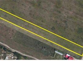 Vanzare  terenuri constructii  8800 mp Timis, Urseni  - 132000 EURO