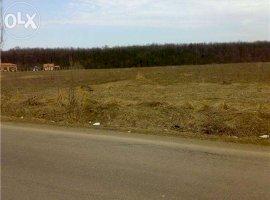 Vanzare  terenuri constructii Ilfov, Izvorani  - 0 EURO