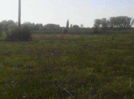 Vanzare  terenuri constructii Ilfov, Dumitrana  - 0 EURO