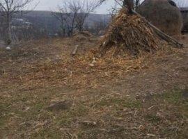 Vanzare  terenuri constructii Iasi, Aroneanu  - 18000 EURO