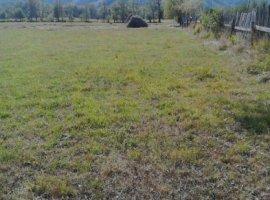 Vanzare  terenuri agricol Mures, Rastolita  - 30000 EURO