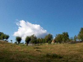 Inchiriere  terenuri constructii Arges, Nucsoara  - 0 EURO lunar
