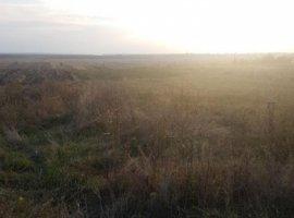 Vanzare  terenuri constructii  15 ha Dambovita, Corbii Mari  - 0 EURO