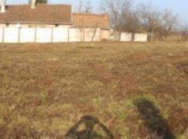 Vanzare  terenuri constructii Arad, Pancota  - 23000 EURO