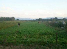 Vanzare  terenuri constructii Brasov, Mandra  - 18000 EURO