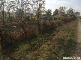 Vanzare  terenuri constructii Iasi, Bosia  - 3800 EURO