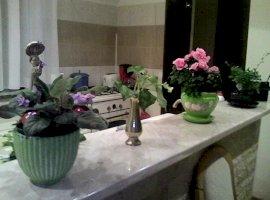 Vanzare  apartament  cu 3 camere  decomandat Cluj, Floresti  - 61000 EURO