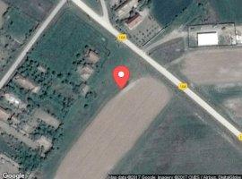 Vanzare  terenuri constructii Dolj, Malu Mare  - 0 EURO