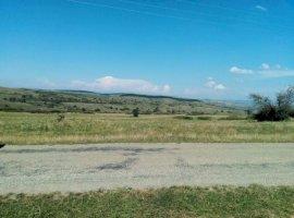Vanzare  terenuri agricol Sibiu, Ocna Sibiului  - 0 EURO