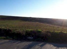 Vanzare  terenuri agricol Dolj, Locusteni  - 1300 EURO