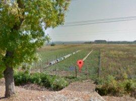Vanzare  terenuri constructii  3000 mp Valcea, Ionesti  - 0 EURO