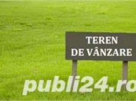 Vanzare  terenuri agricol  740 ha Arad, Frumuseni  - 37920 EURO