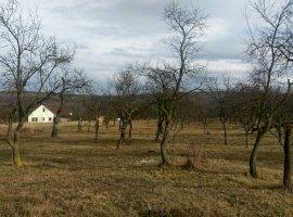 Vanzare  terenuri constructii Cluj, Tureni  - 55000 EURO