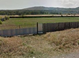 Vanzare  terenuri constructii  3500 mp Bacau, Targu Trotus  - 0 EURO