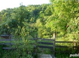 Vanzare  terenuri constructii  2000 mp Valcea, Stoenesti  - 7500 EURO