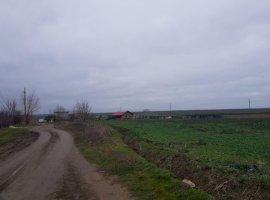 Vanzare  terenuri constructii Constanta, Poiana  - 18000 EURO