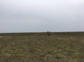 Vanzare  terenuri constructii Ilfov, Ordoreanu  - 20000 EURO