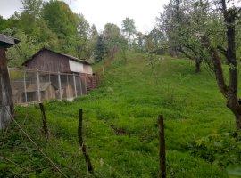 Vanzare  casa Arges, Bughea de Jos  - 13000 EURO