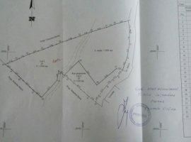 Vanzare  terenuri constructii Prahova, Provita de Sus  - 12500 EURO