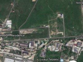 Vanzare  terenuri constructii Ilfov, Catelu  - 218 EURO