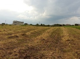 Vanzare  terenuri constructii  4900 mp Suceava, Scheia  - 2000 EURO