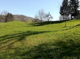 Vanzare  terenuri constructii Dambovita, Valea Lunga-Gorgota  - 5 EURO