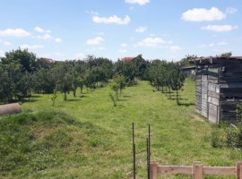 Vanzare  terenuri constructii Arad, Sanleani  - 72000 EURO