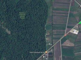 Vanzare  terenuri agricol Brasov, Lunca Calnicului  - 42000 EURO