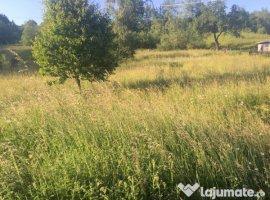 Vanzare  terenuri constructii  2500 mp Suceava, Molid  - 15000 EURO