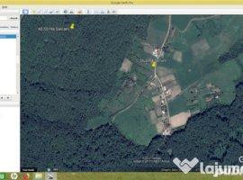 Vanzare  terenuri constructii  2700 mp Iasi, Goruni  - 0 EURO