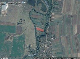Inchiriere  terenuri agricol  5800 mp Cluj, Jucu de Sus  - 0 EURO lunar