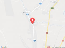 Vanzare  terenuri constructii  5000 mp Arges, Maracineni  - 0 EURO