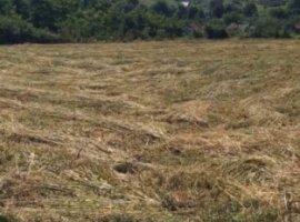 Vanzare  terenuri constructii Cluj, Savadisla  - 50000 EURO