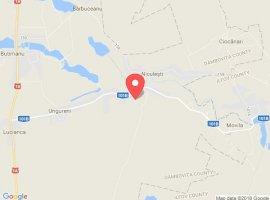 Vanzare  terenuri constructii  2100 mp Dambovita, Niculesti  - 25000 EURO