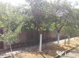 Vanzare  casa  3 camere Timis, Manastiur  - 26000 EURO