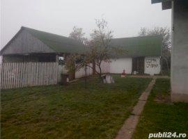 Vanzare  casa  6 camere Timis, Varias  - 70000 EURO