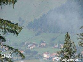 Vanzare  terenuri constructii  5300 mp Suceava, Vama  - 8 EURO