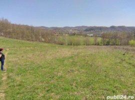 Vanzare  terenuri constructii  20002.5 ha Valcea, Priporu  - 0 EURO