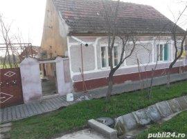 Vanzare  casa  3 camere Timis, Denta  - 30000 EURO
