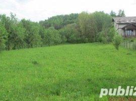 Vanzare  terenuri constructii  2500 mp Prahova, Izvoarele  - 0 EURO
