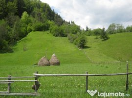 Vanzare  terenuri constructii  2800 mp Arges, Dambovicioara  - 30000 EURO