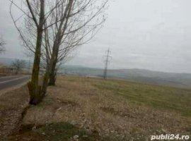 Vanzare  terenuri constructii  3800 mp Cluj, Ciurila  - 0 EURO