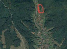 Vanzare  terenuri constructii  1600 mp Arad, Barzava  - 8000 EURO