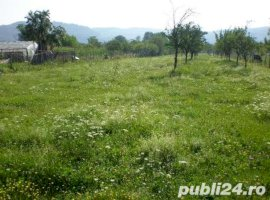 Vanzare  terenuri constructii  5000 mp Arges, Pietrosani  - 25000 EURO