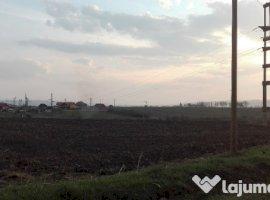 Vanzare  terenuri constructii  15.6 ha Mures, Dumbravioara  - 0 EURO
