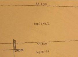 Vanzare  terenuri constructii  1000 mp Timis, Sanandrei  - 48000 EURO