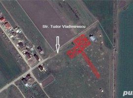 Vanzare  terenuri constructii Ilfov, Ordoreanu  - 0 EURO