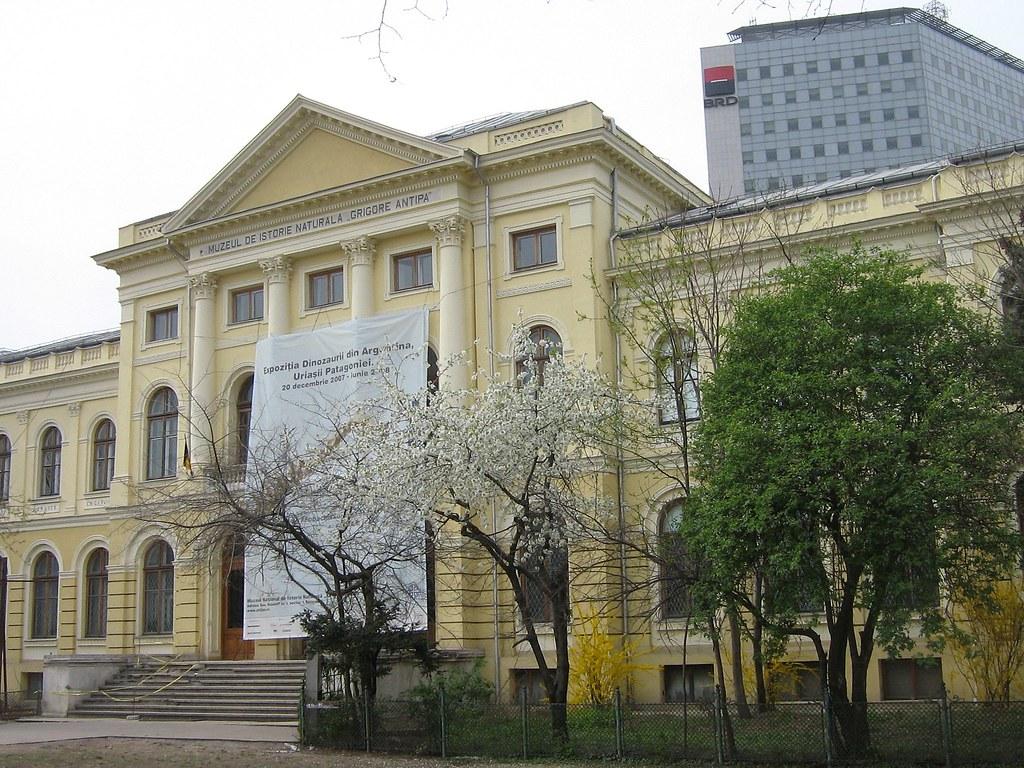 Muzeul Antipa ar putea pierde 45% din parcul adiacent, la cererea Ministerului Culturii